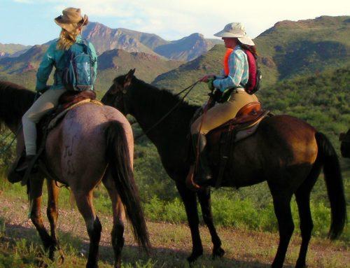 Uporaba konja v psihoterapiji